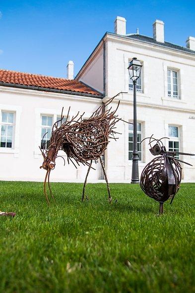 pelican et Ibis sur les pelouses de la mairie