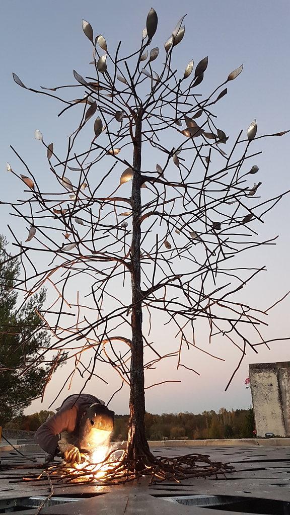 L'arbre du souvenir, cimetière de la Couronne